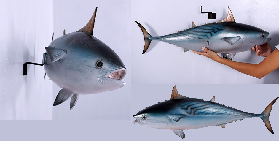 Mackerel Tuna