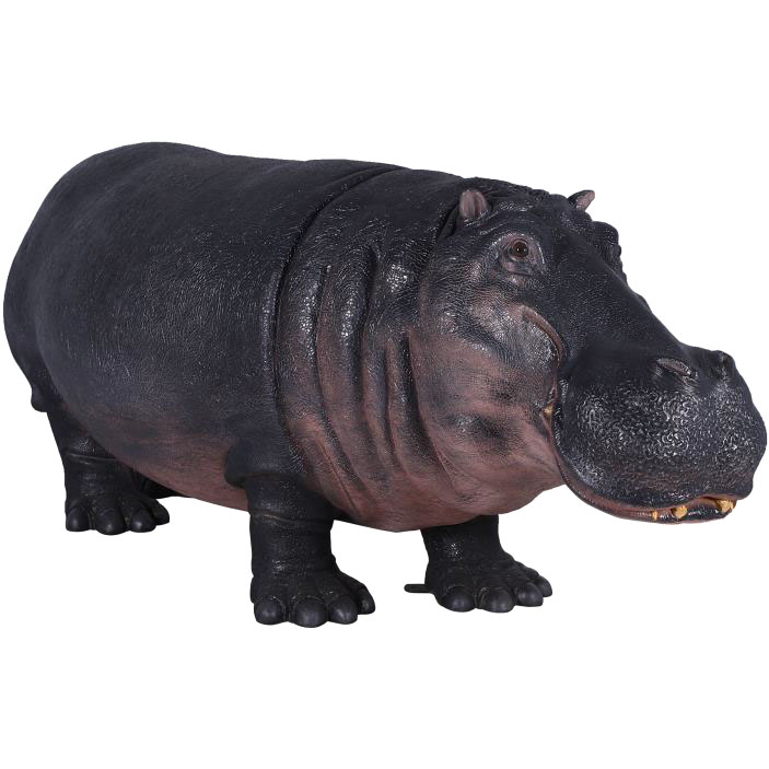 Hippopotamus - New