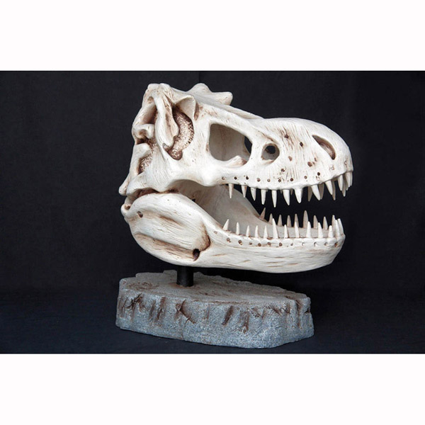 T-Rex Head - Skeleton